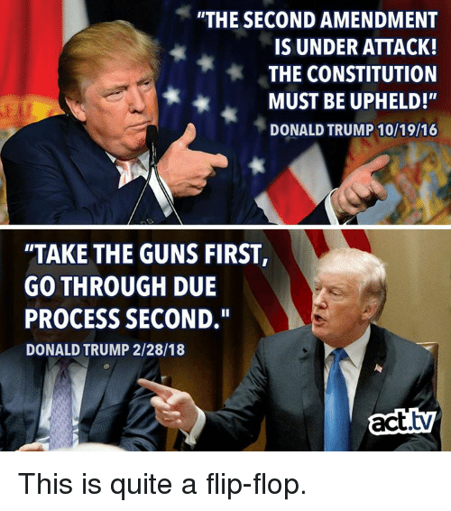the-second-amendment-is-under-attack-the-constitution-must-be-31244671